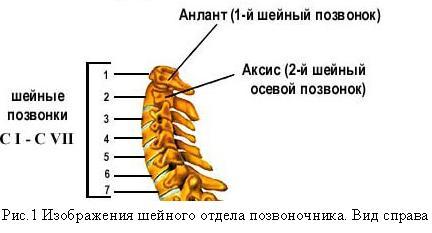 Чем снять головную боль при шейном остеохондрозе