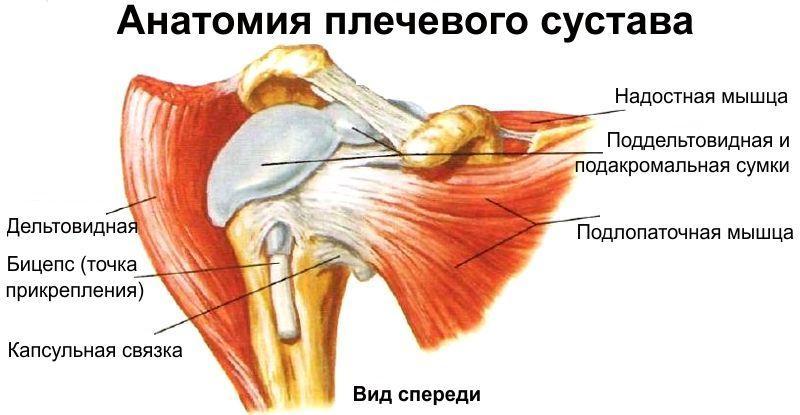 травмы мышц сухожилий и вспомогательного аппарата суставов
