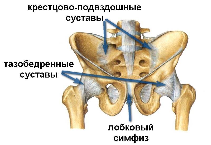 артроз коленного сустава лечение припараты